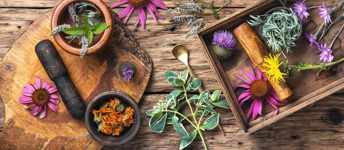 - Are you looking to improve your energy, vitality, and overall health? Then a one-on-one herbal consultation is for you!