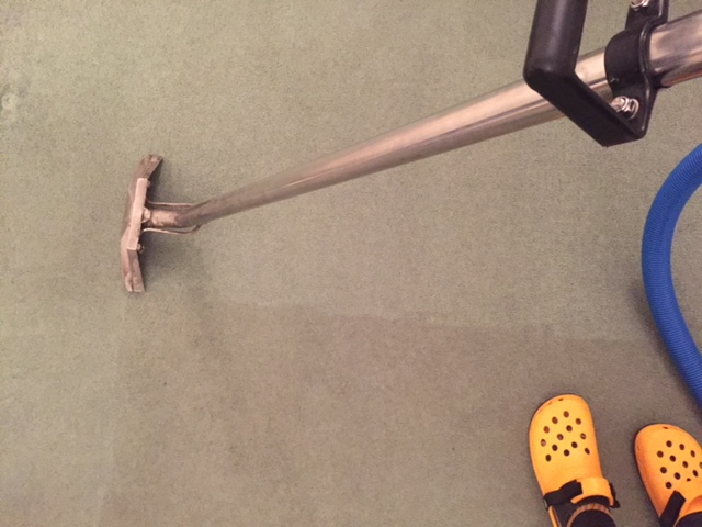 Carpet cleaning 1.JPG
