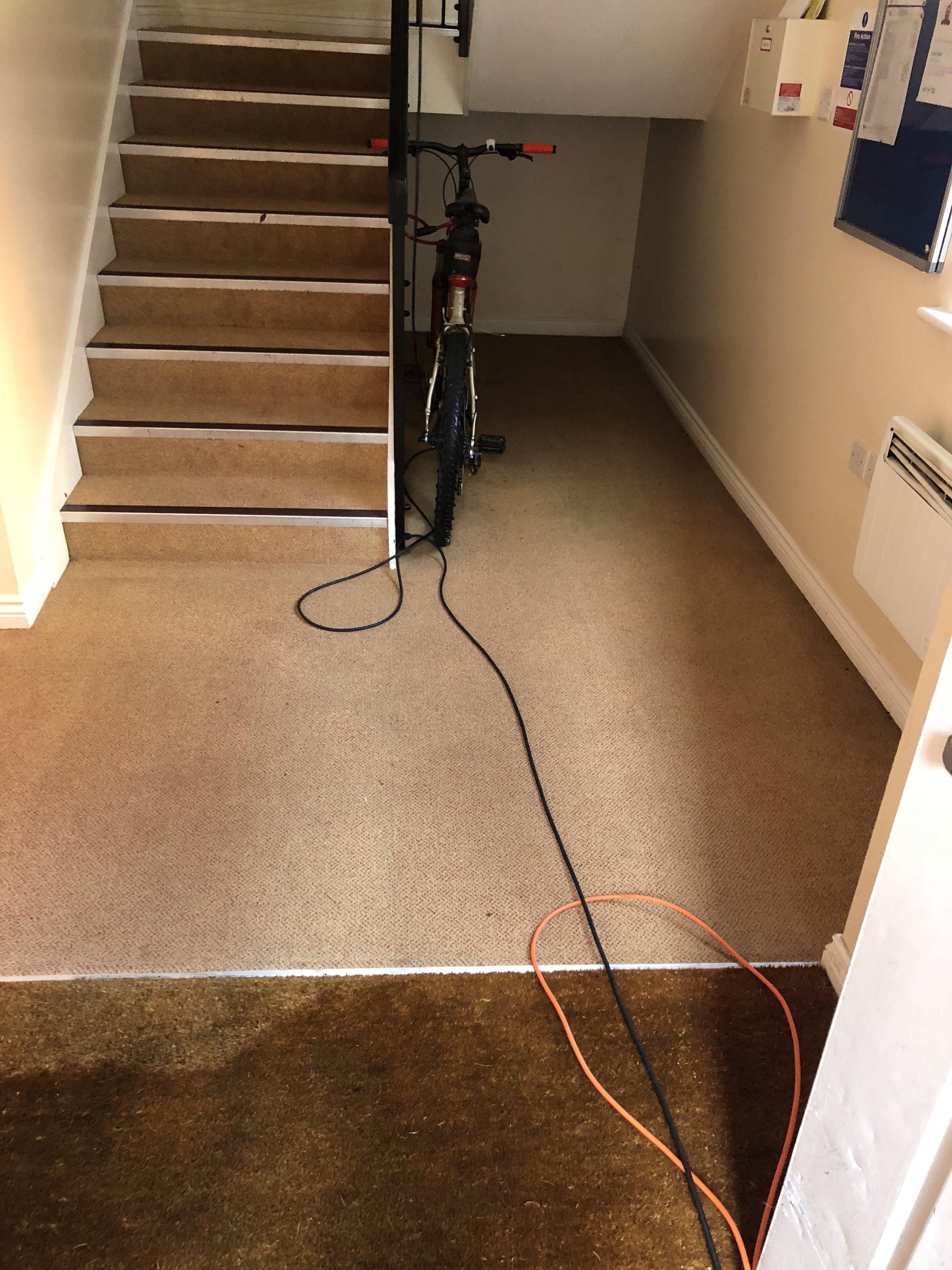 Carpet 7 after.jpg