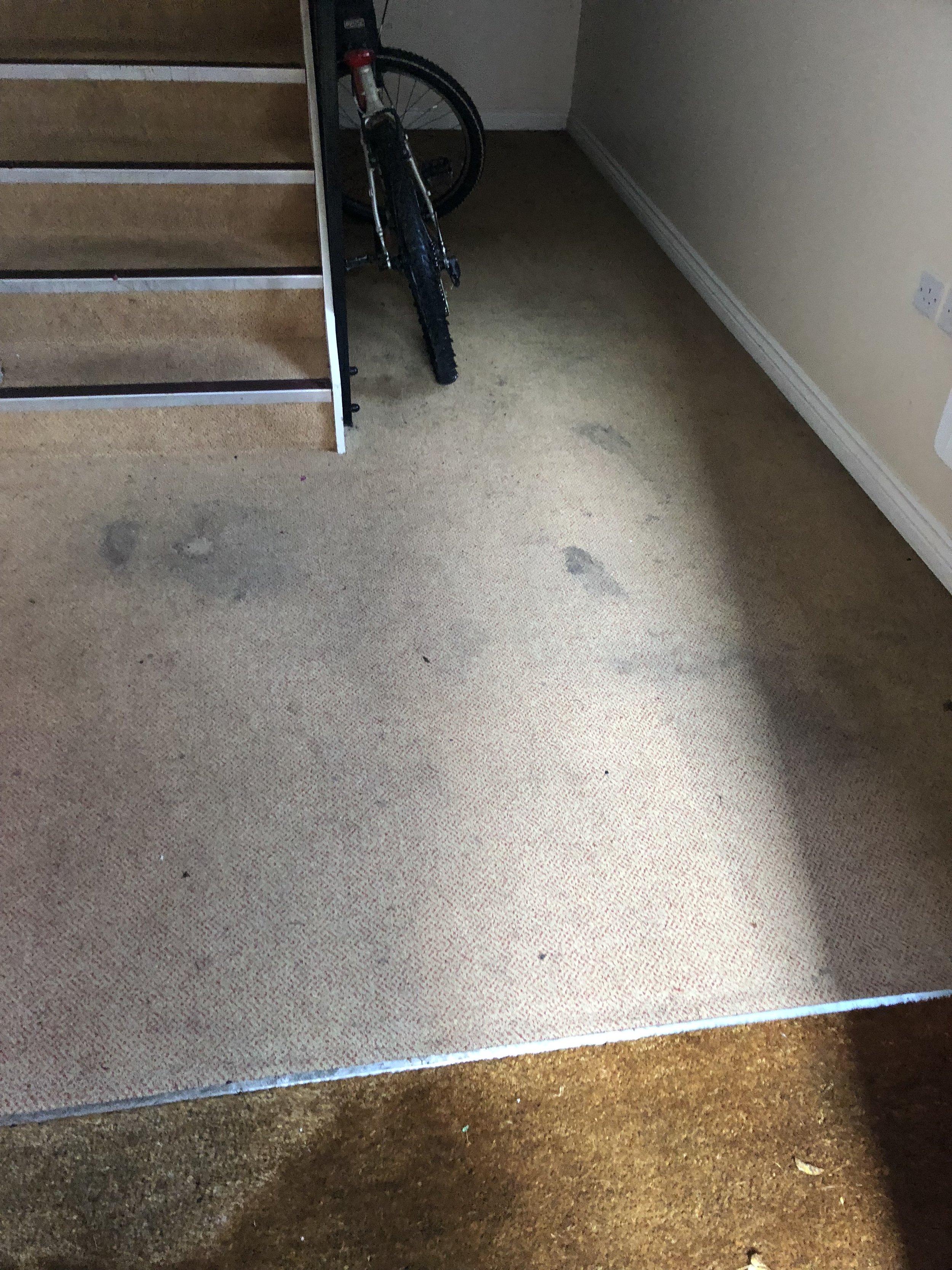 Carpet 7 before.jpg