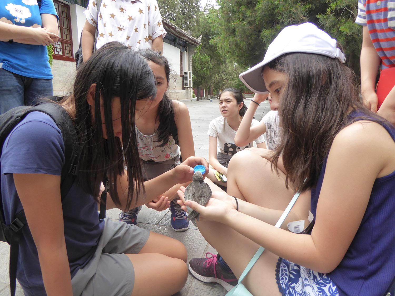 summerchina2016_5.jpg