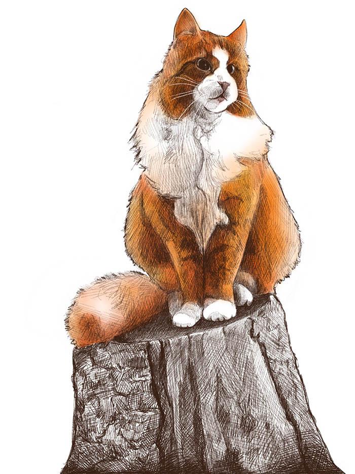 Cat on a Stump