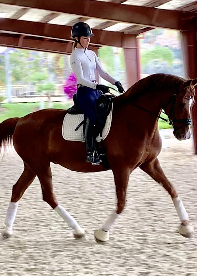 Sophie Garner riding Conquistador aka Dude