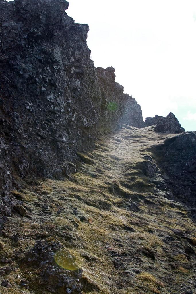 trail-683x1024.jpg