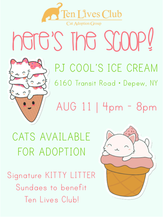 Here's the Scoop Flyer.png