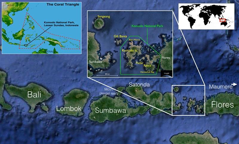 Maumere-Komodo-MAP.jpg