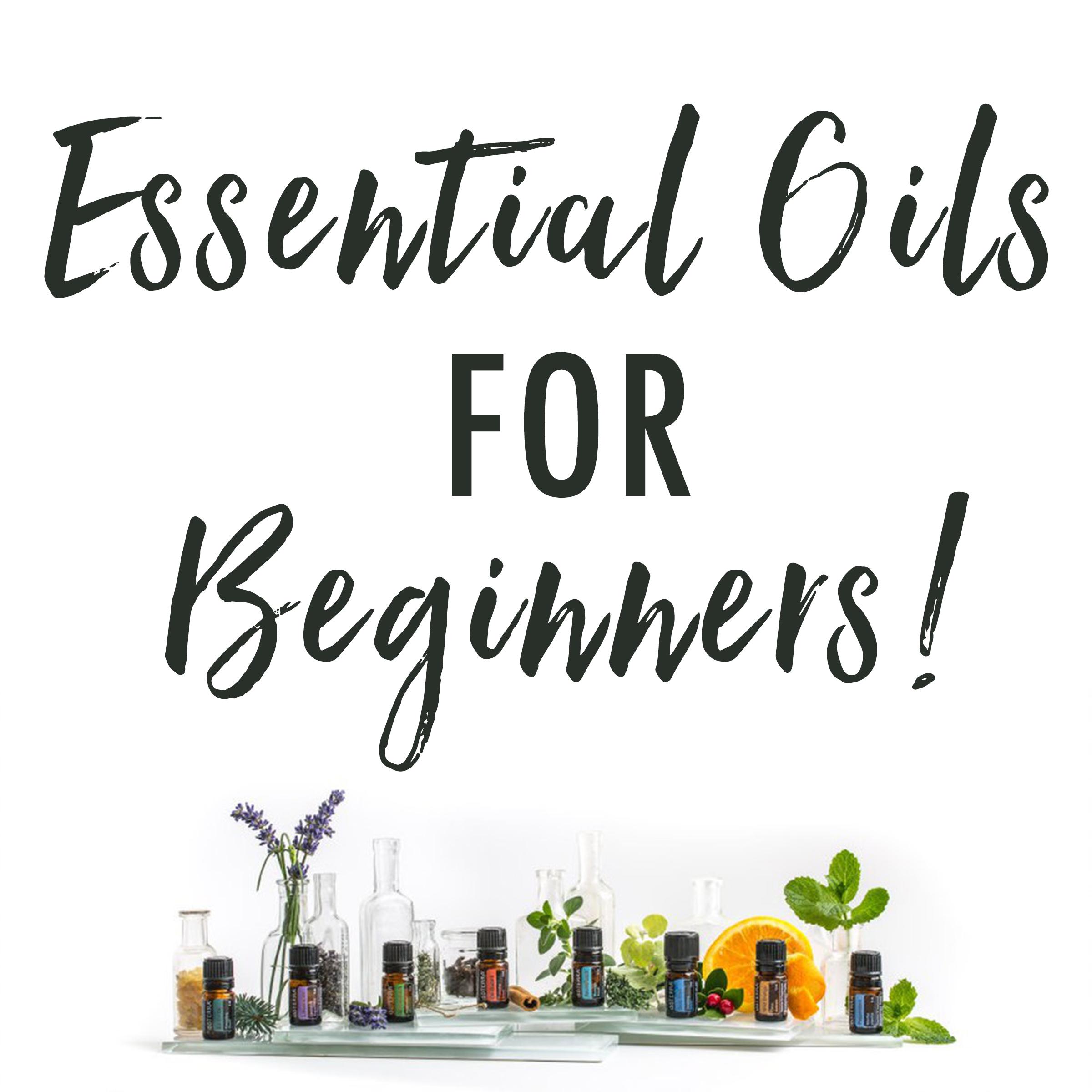 EO For Beginners.jpg