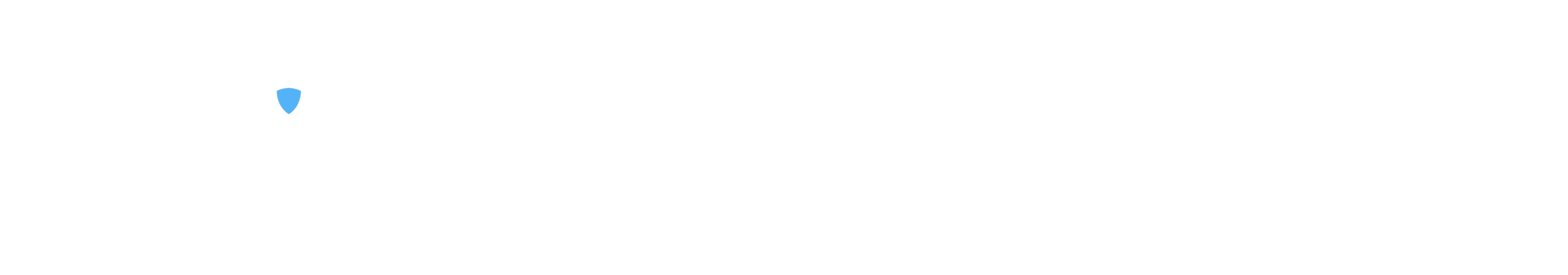 Erin access pro iii.png