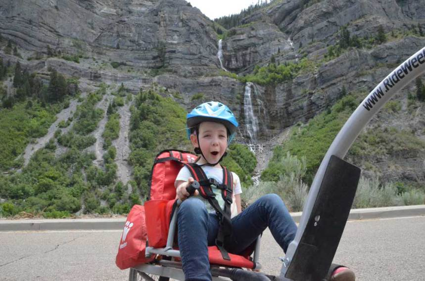 Weehoo® Bike Trailer, Trailer Bike, Bicycle Trailer