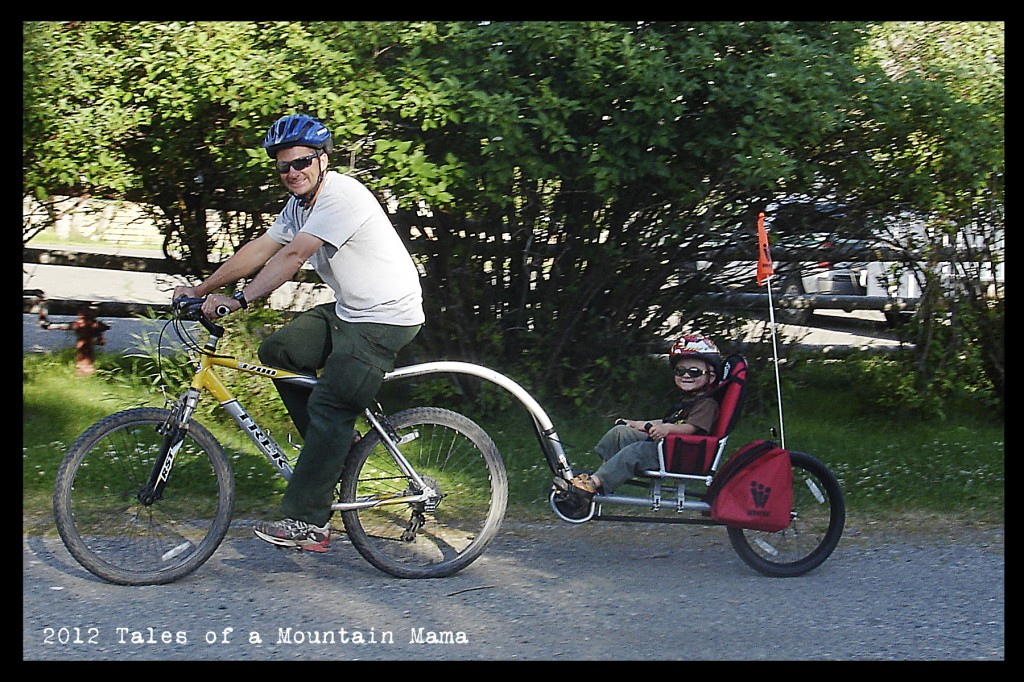 Weehoo®  Bike Trailer  |  Bicycle Trailer  |  Trailer Bike