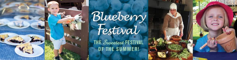 blueberry-banner-2018-1170x300.jpg