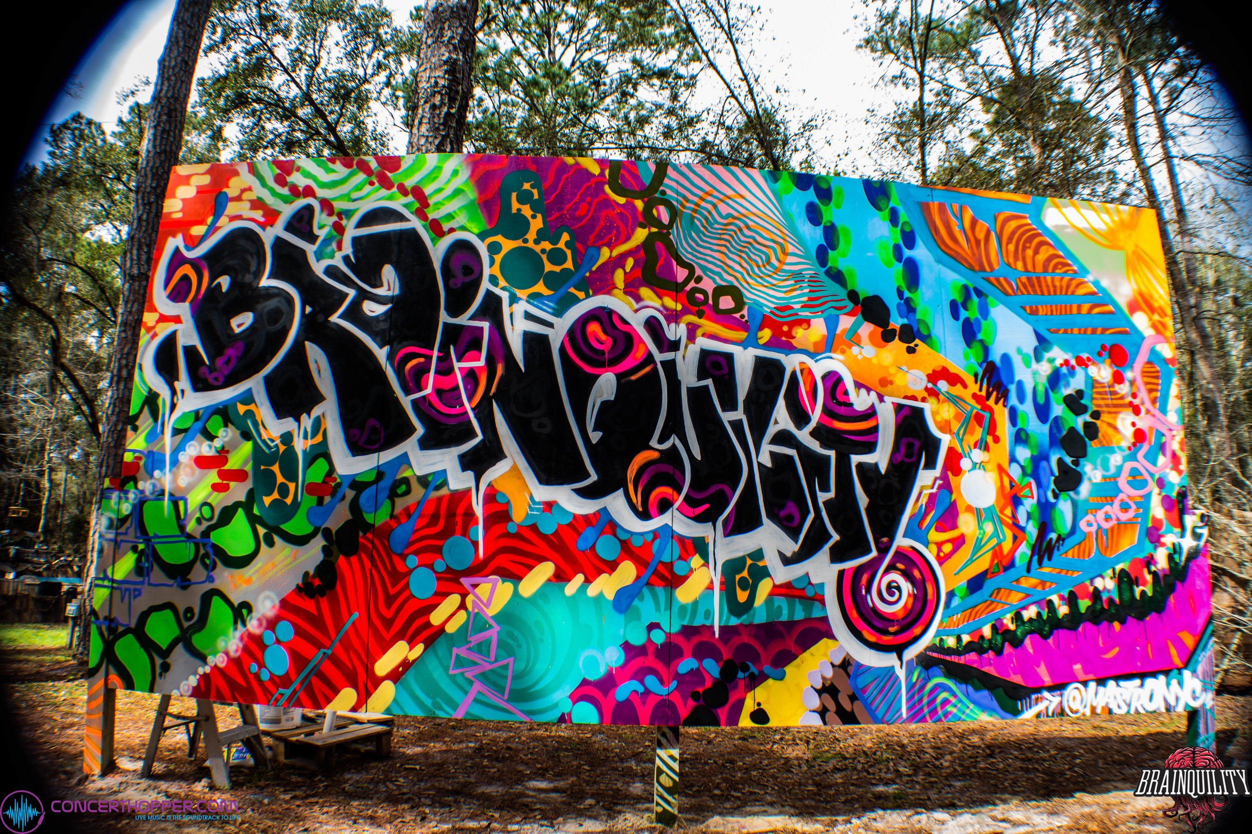 Brainquility Music and Arts Festival 2019 Mural by @MastroNYC