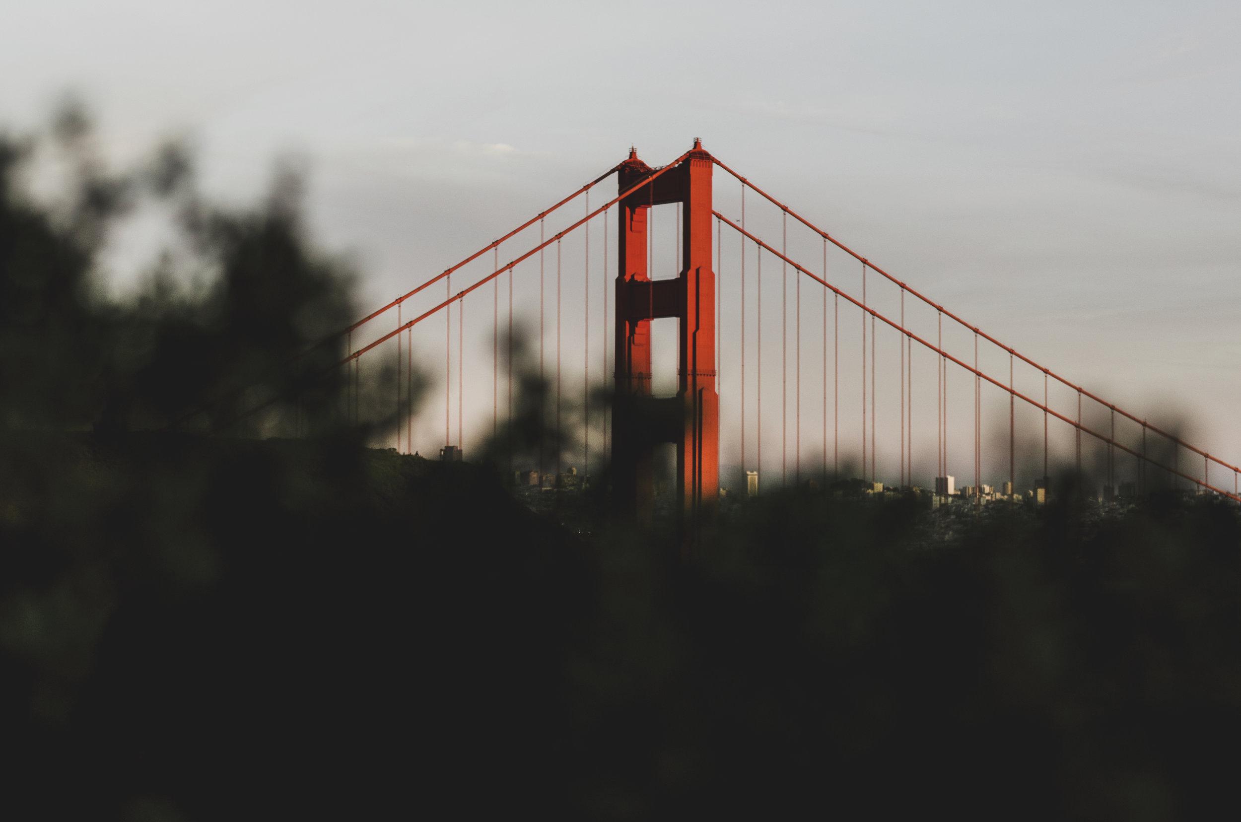 California003