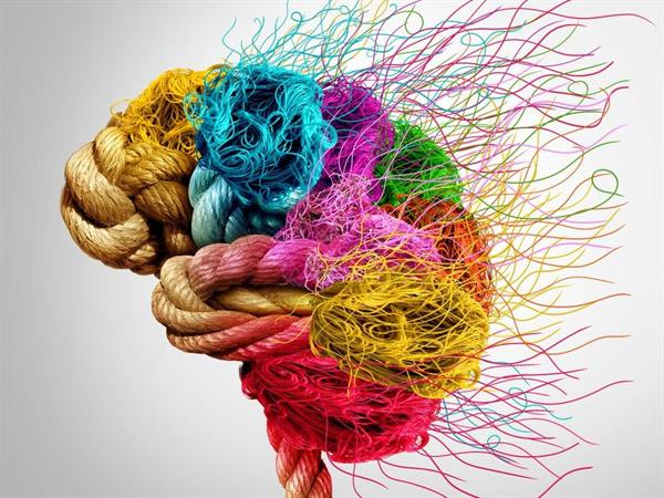Colourful Brain.jpg