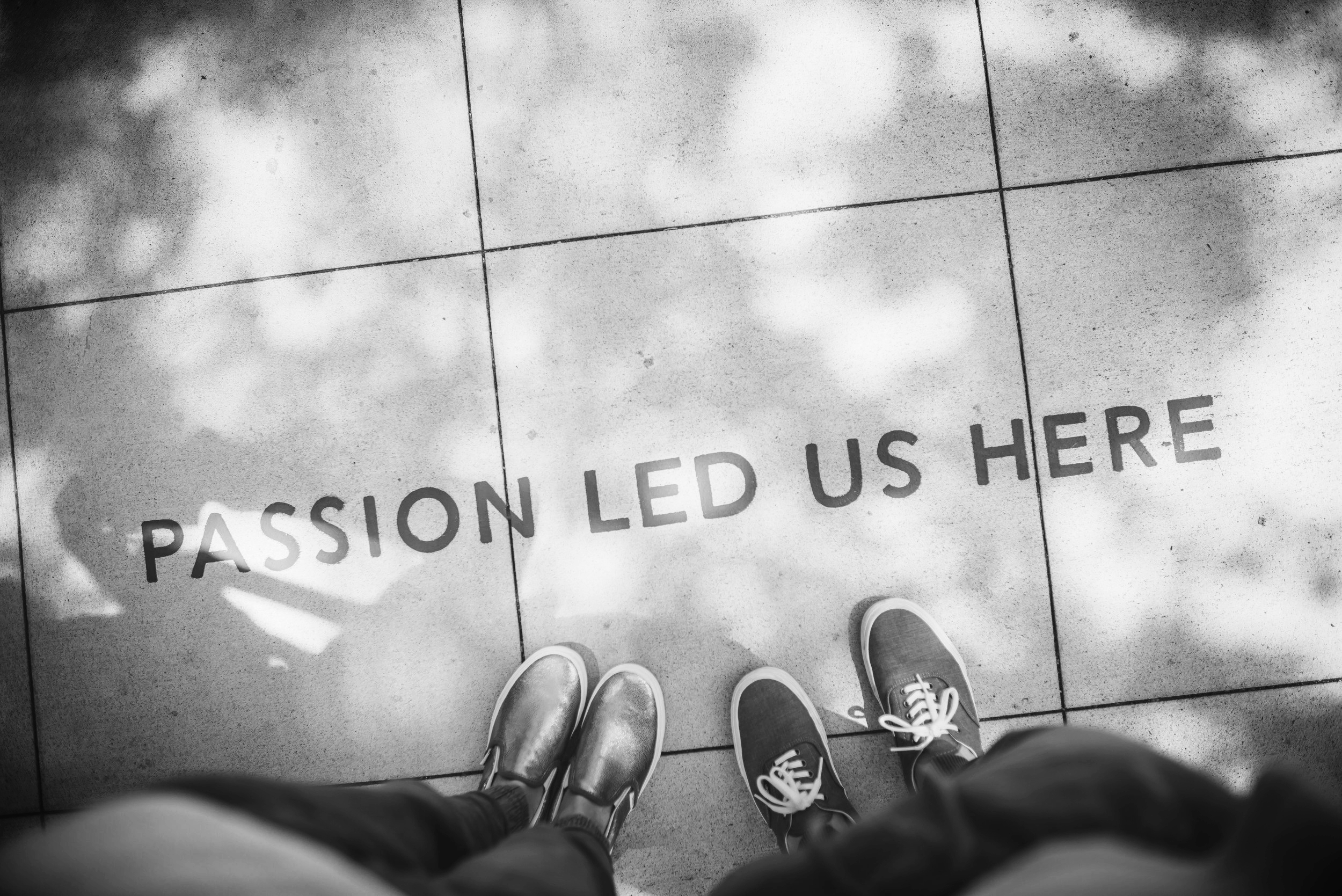passion led us here.jpg