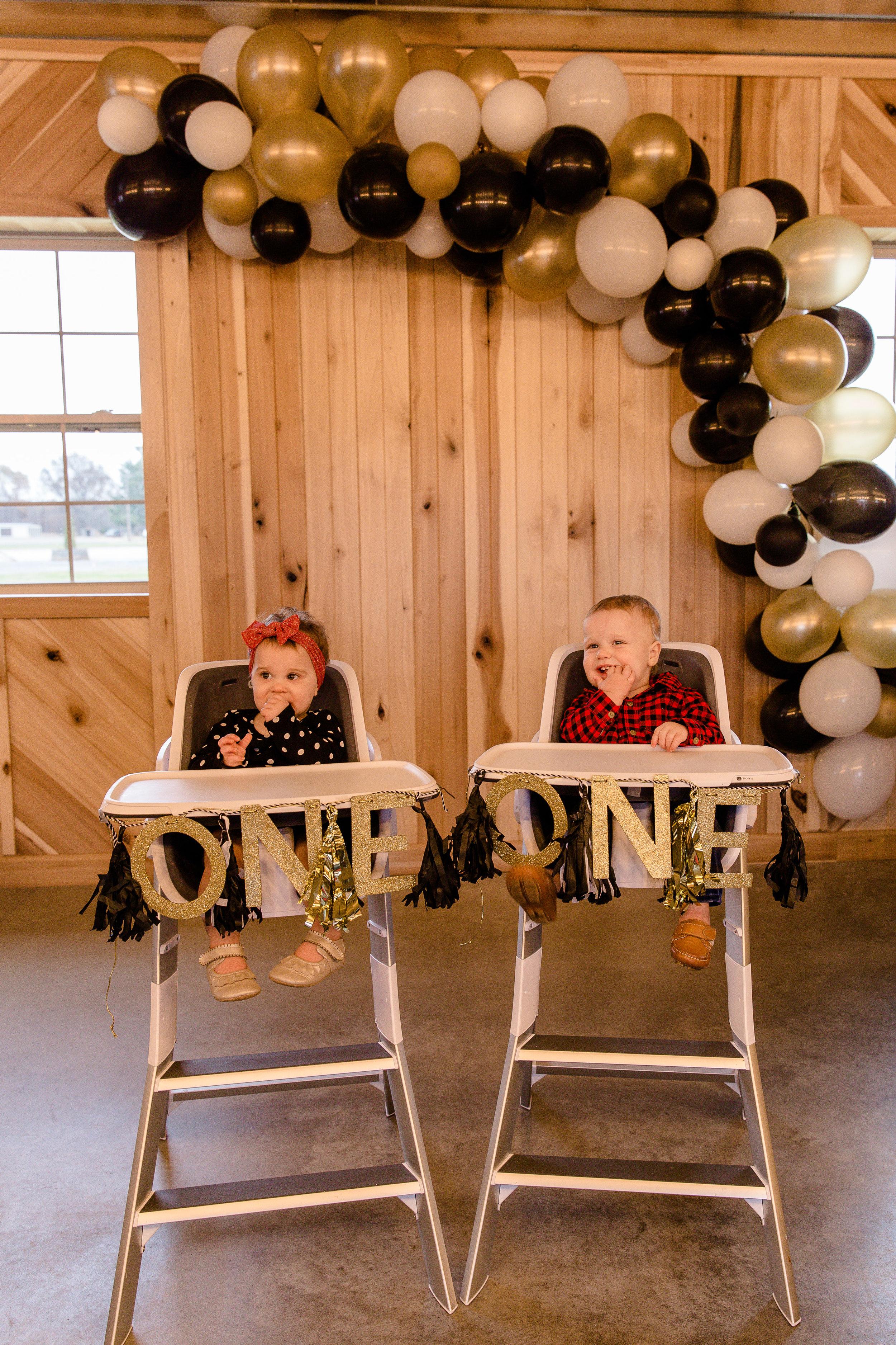 Donohoo Duo 1st Birthday_MG_1600.jpg