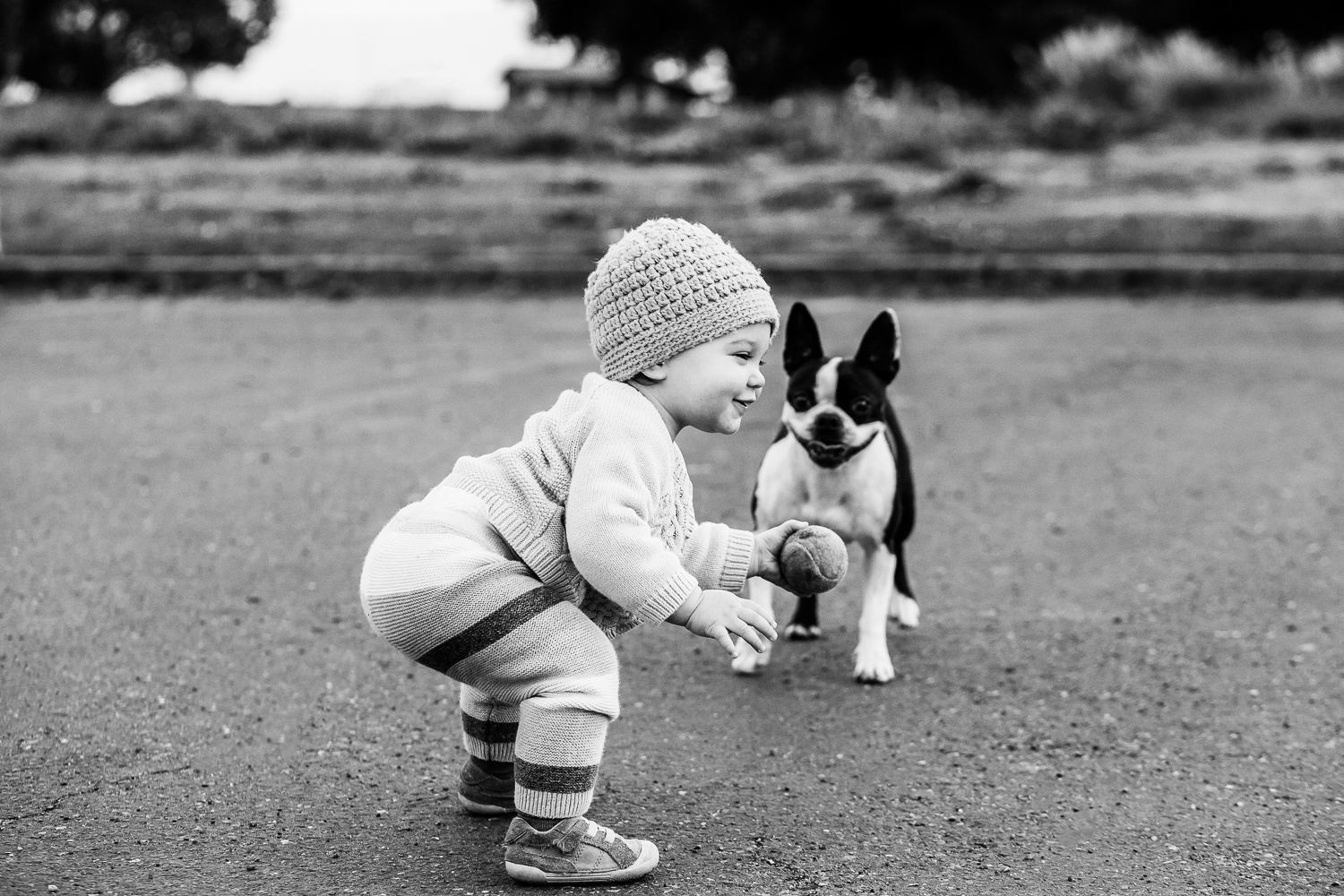 one year old baby girl squatting down and playing fetch with her dog {East Bay Family Photographer}