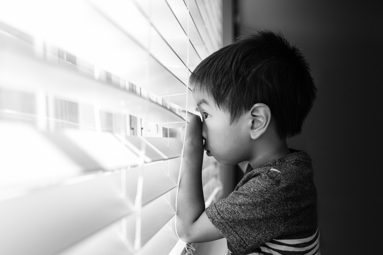 profile image of a little boy peaking out of a window through blinds | East Bay Lifestyle Family Photographer
