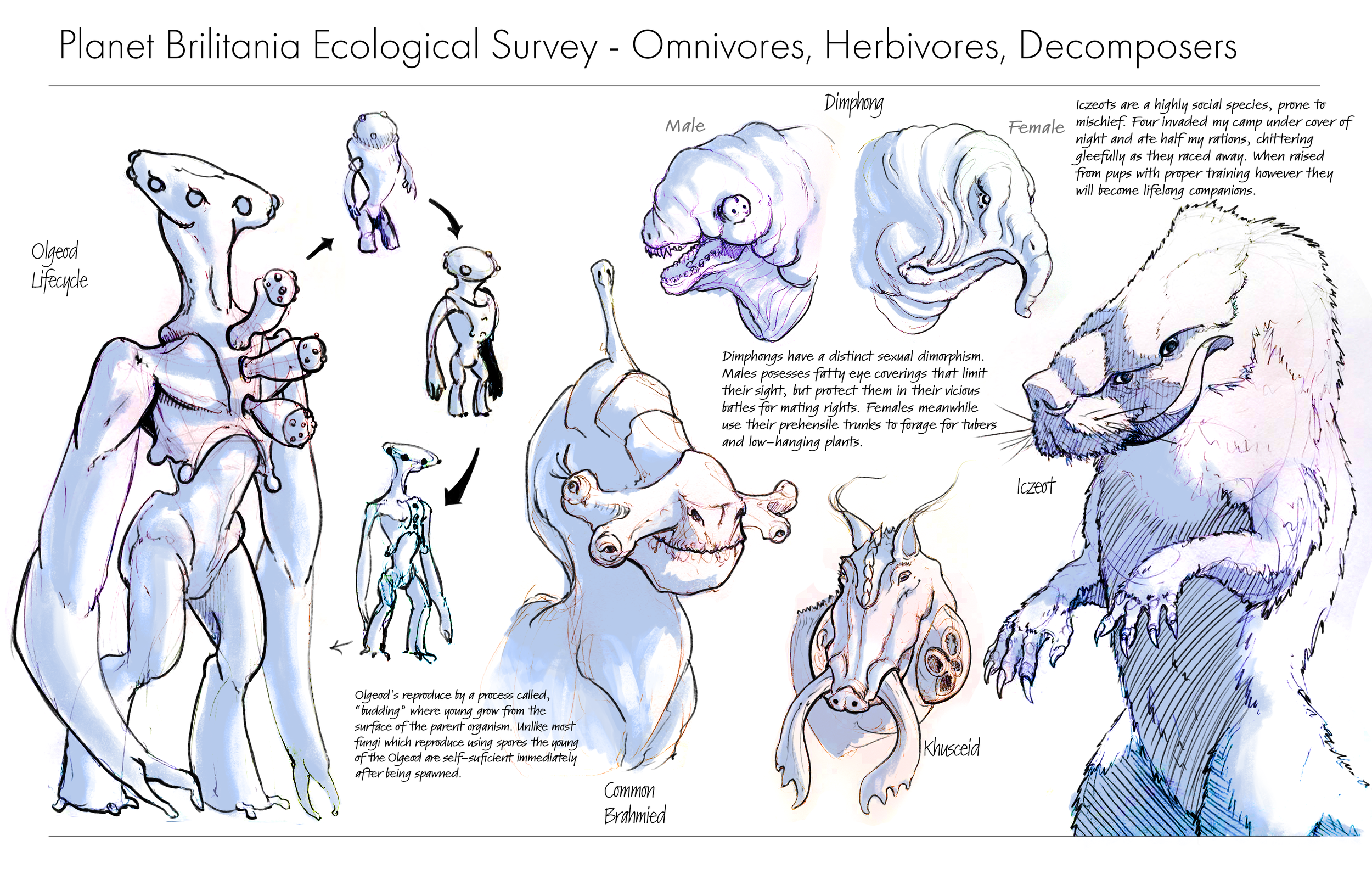 Ecological Survey1.png