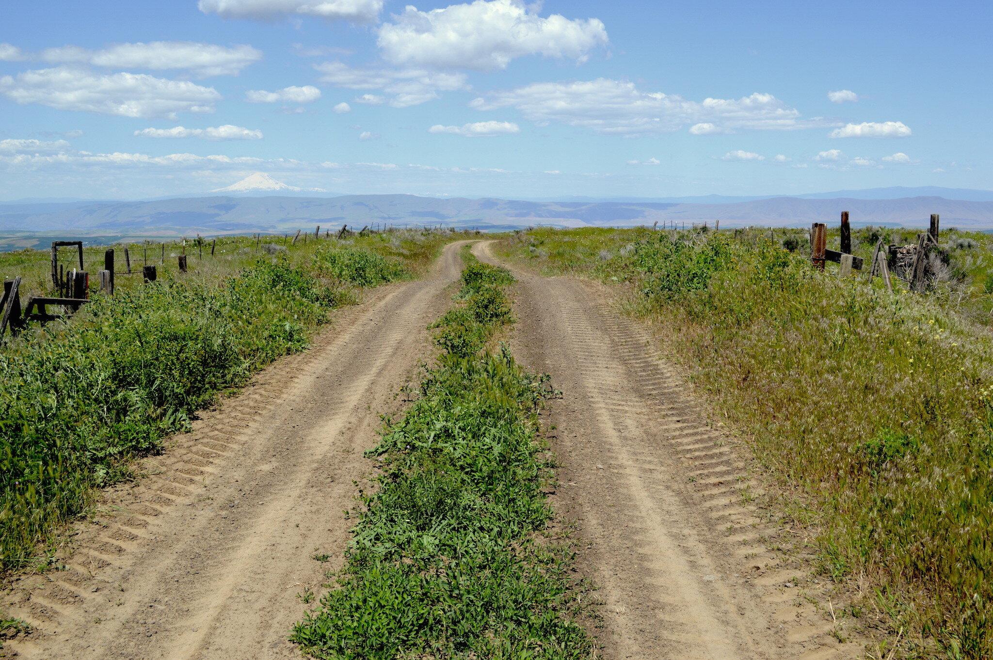 - the dalles roads