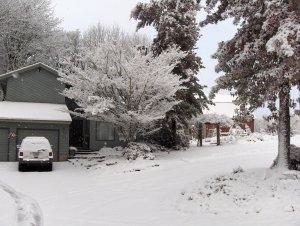 29950-snow12-19-08017.jpg