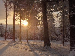 3d5eb-snow12-19-08012.jpg