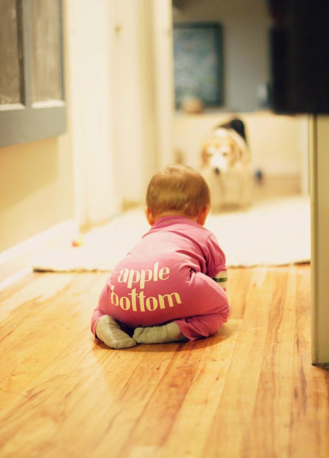 e4ec5-apple2bbottom.jpg