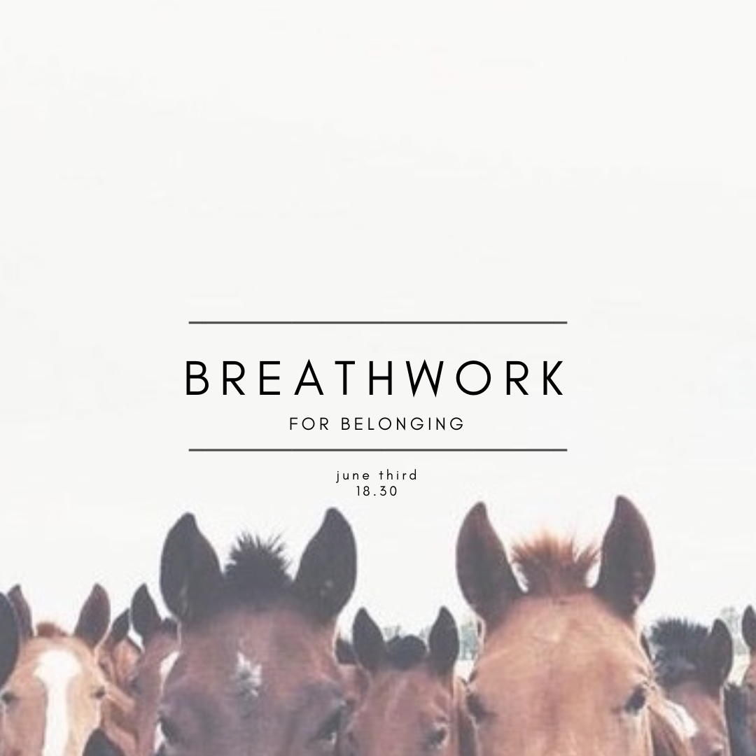 Copy of breathwork for softening fgl.png