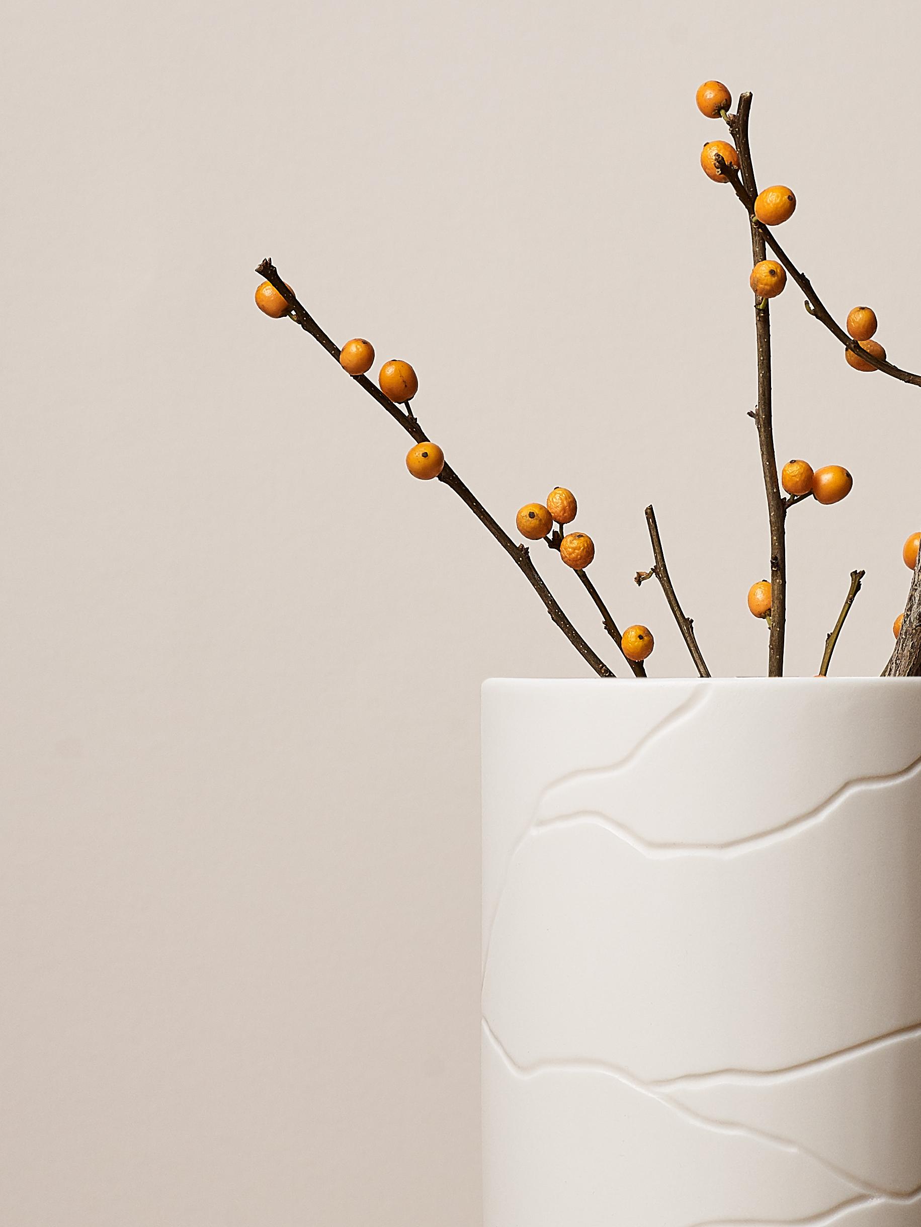 Sibling Vase Vein 3.jpg