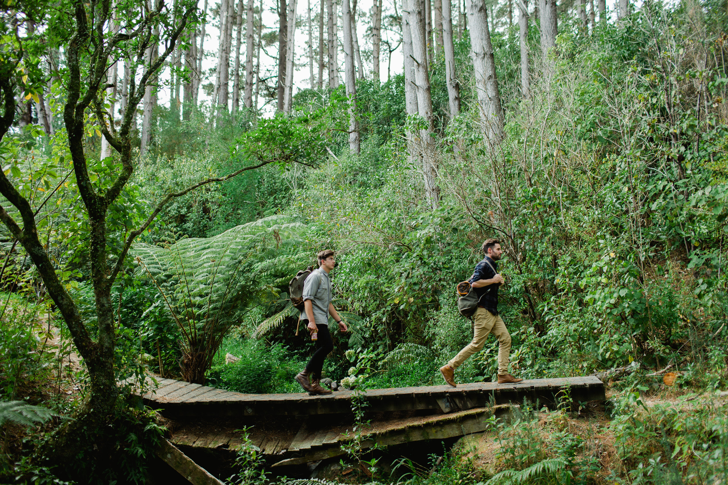Fix+&+Fogg+Forest+Shoot+(Hi+Res)-34 12.33.57 AM.jpg