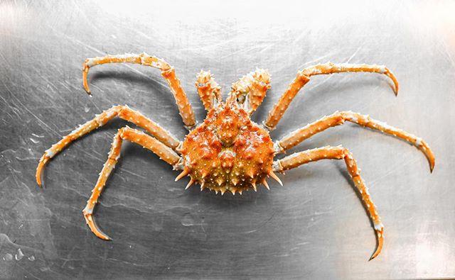California King Crab