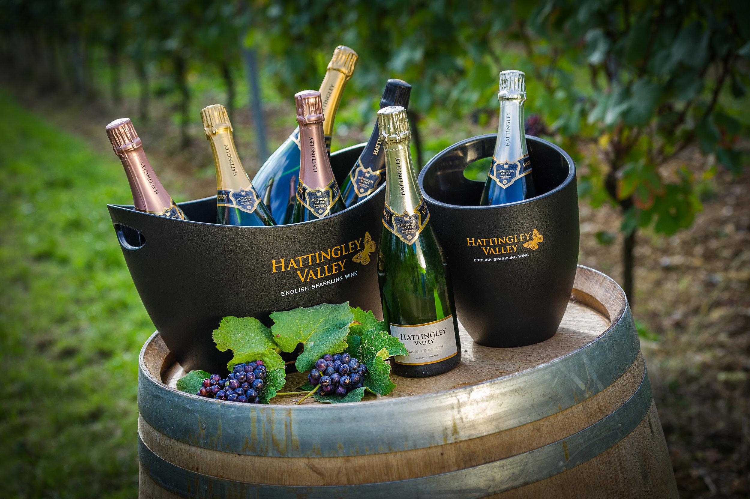 Visit Hattingley Valley Wines Website >