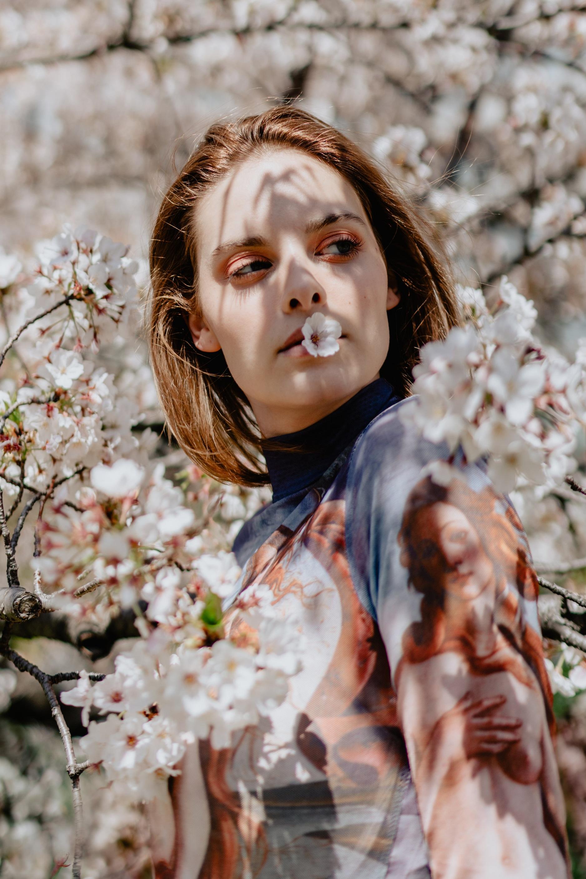Blossom - Sakura