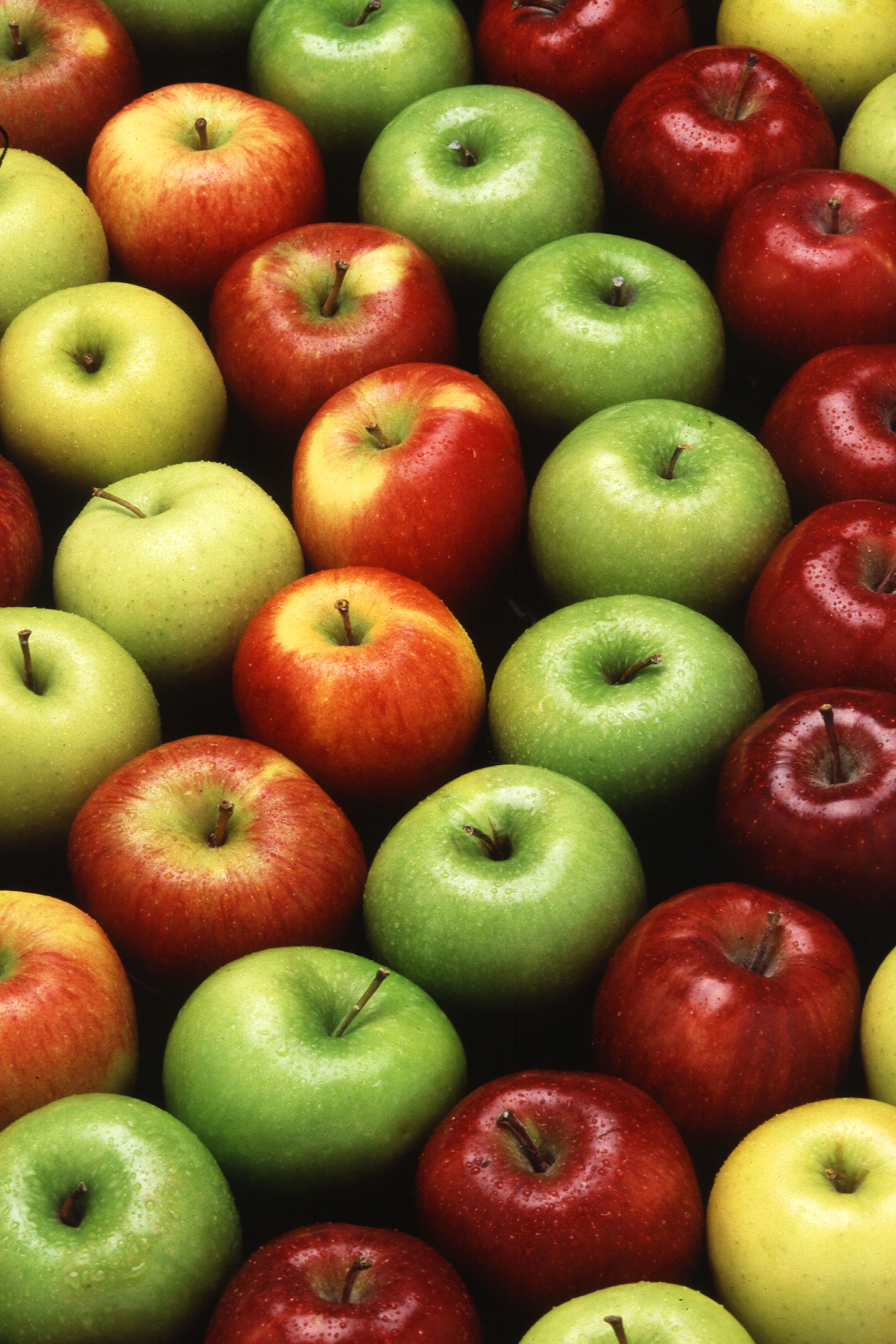 Apples are a cultivated fruit with many color coded varieties.