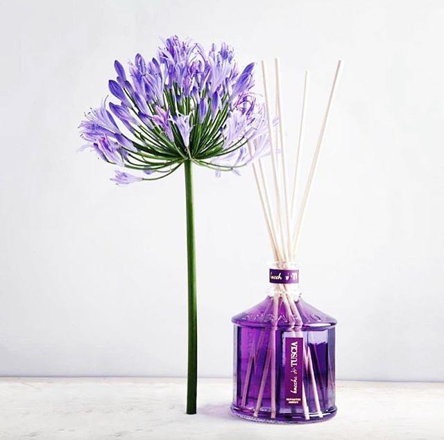 lavendar difuser.jpg
