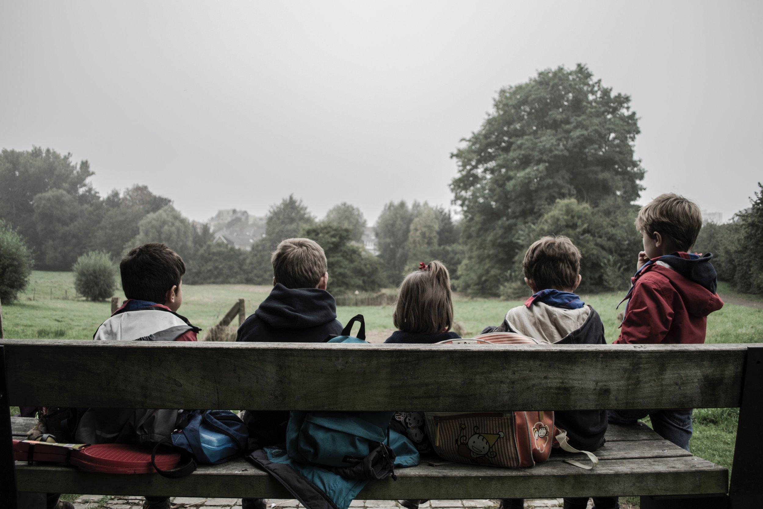 Wald und Wiesen gibt es auch ganz in der Nähe ... wir sind schon dabei und machen unsere Pläne von Schule bald wahr.