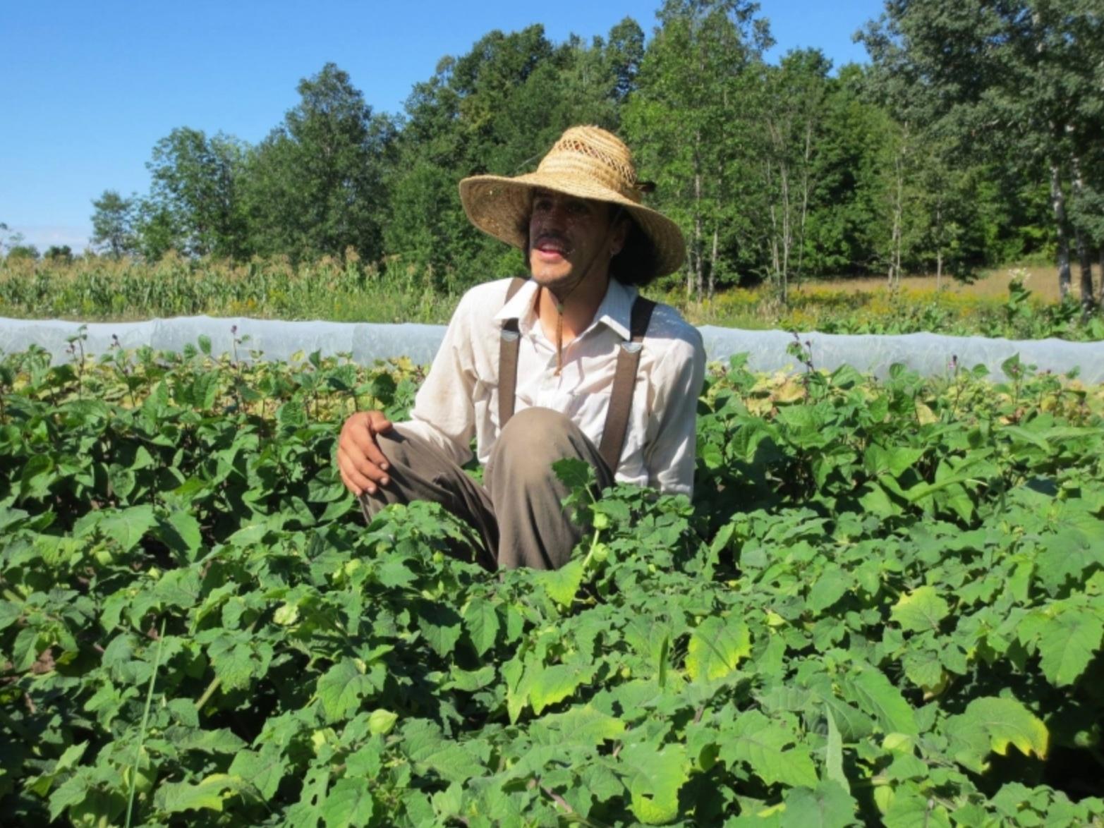 EARTH HAVEN FARM - Creator of biodynamic soil in Tweed, Ontario