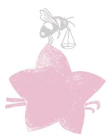 VanillaCheesecake_Top-pink.jpg