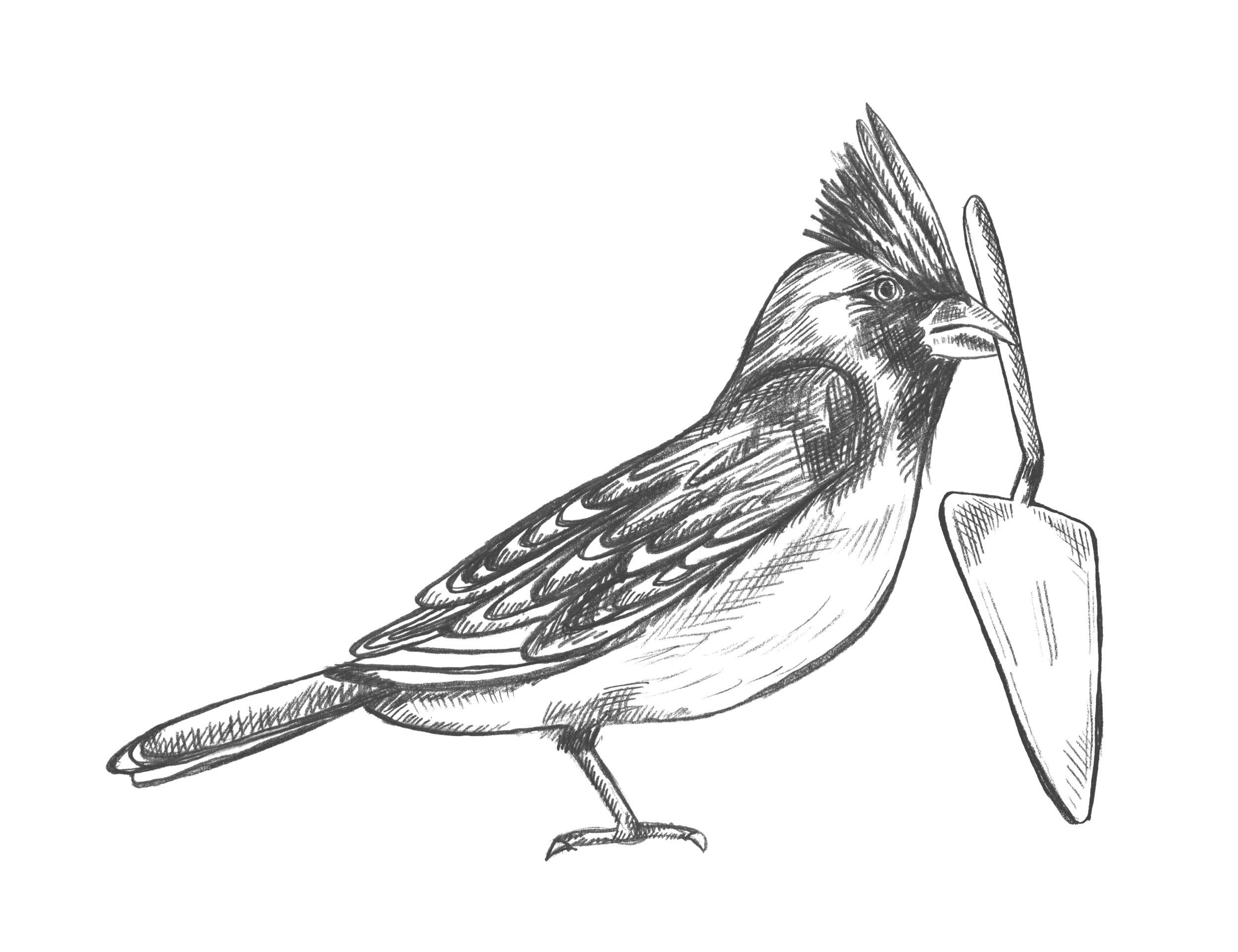 Pots&Co_Northern Bird_MASTER_V2_80K.jpg