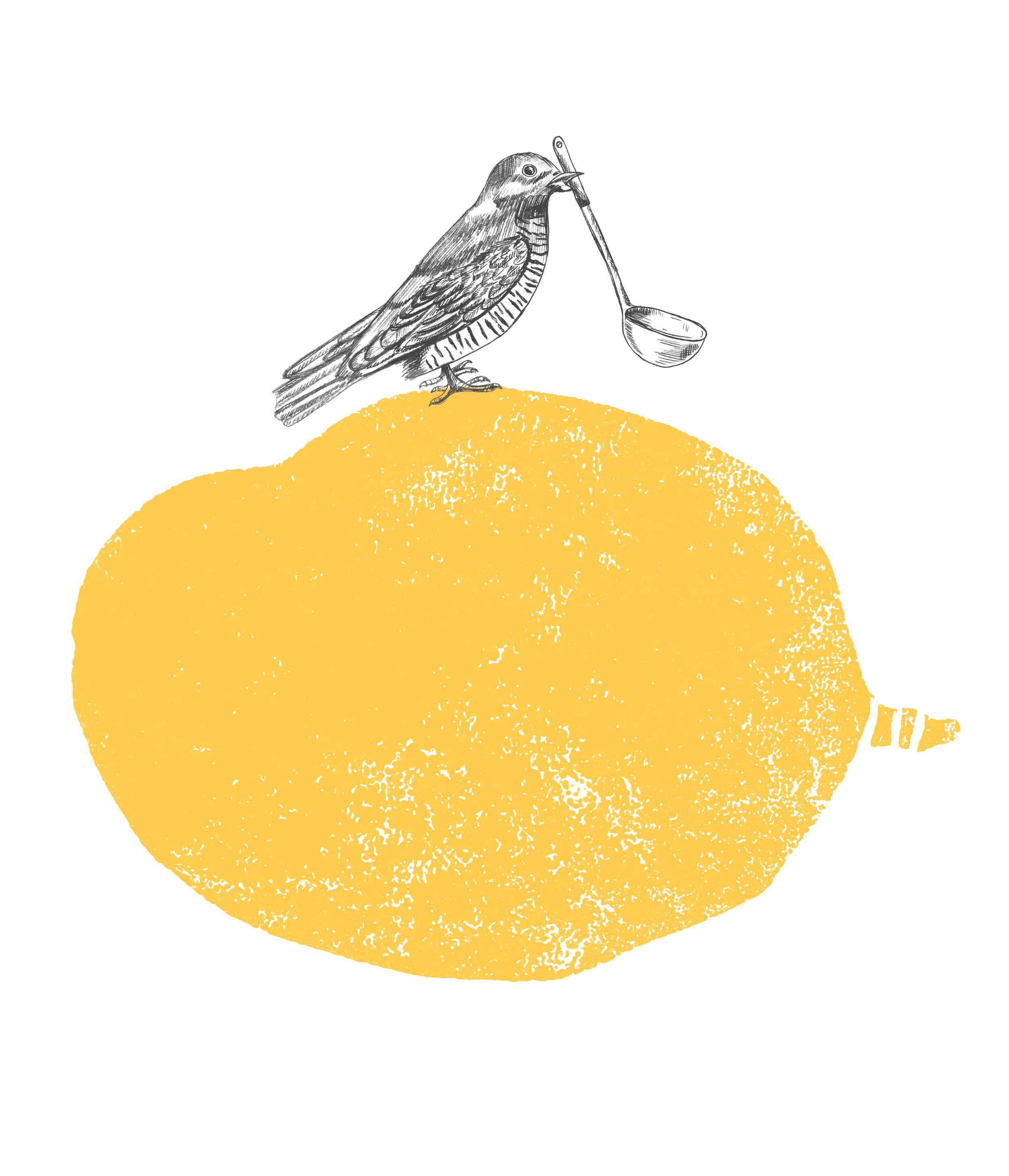 Airline Pot_Mango_Passion Fruit_Front Illustration.jpg
