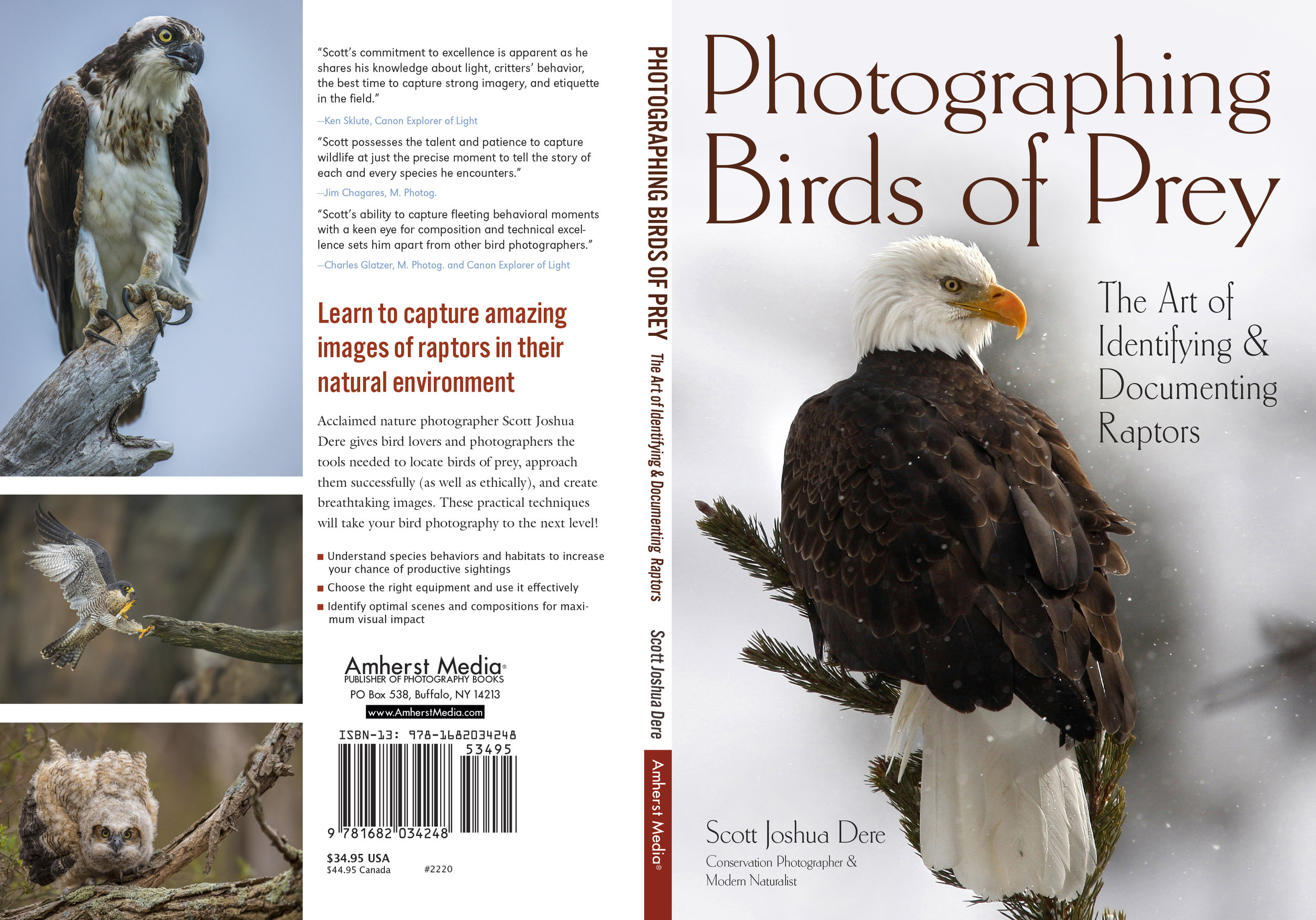 Books - Photographing Birds of Prey