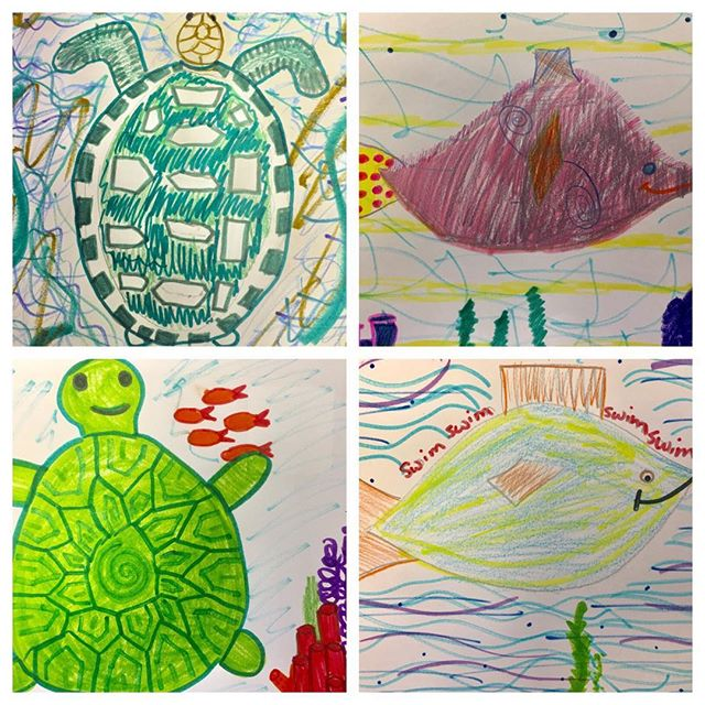 Turtles and endangered animals week🦏🐢