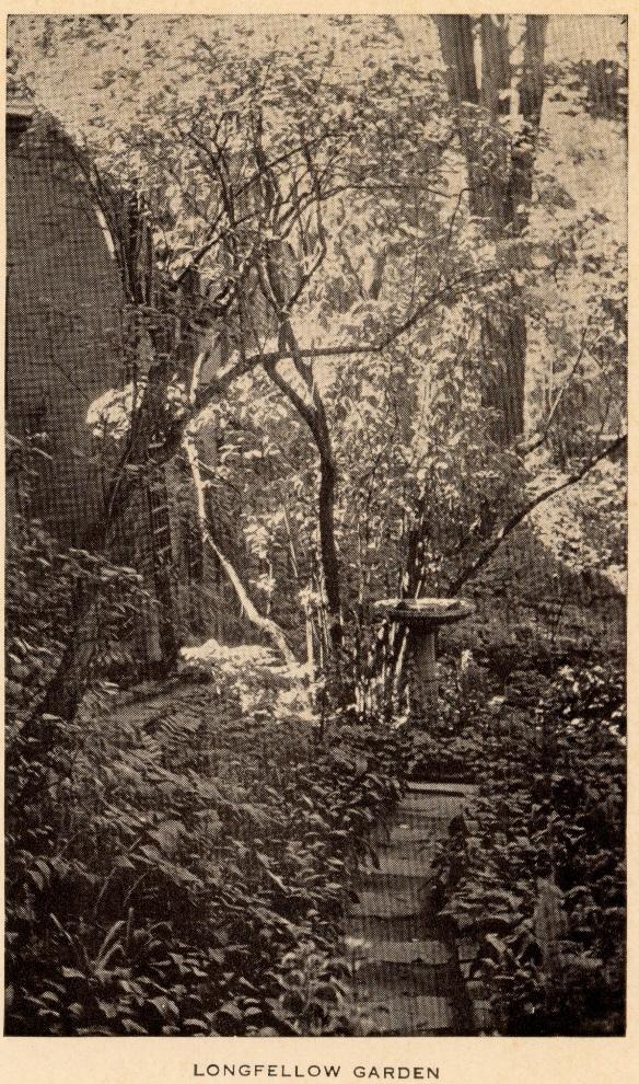 The Garden and Birdbath c. 1929
