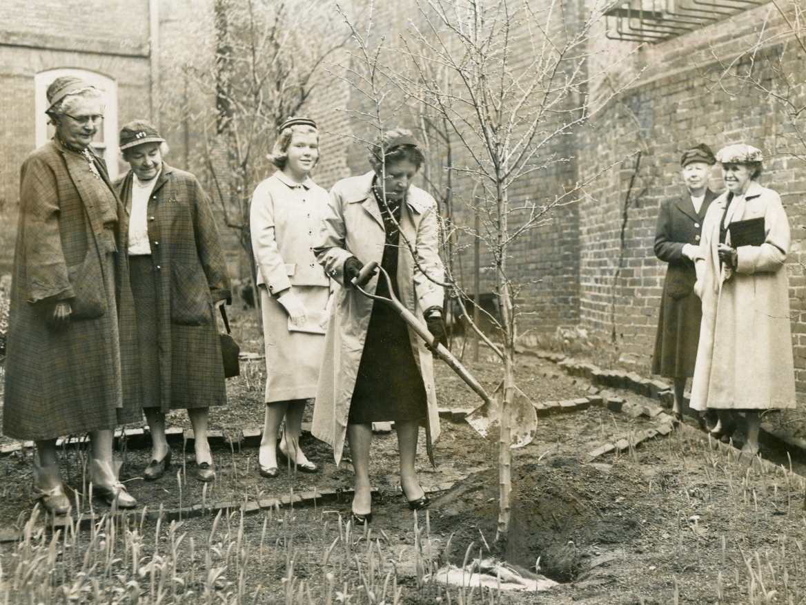 Garden Club History - A Story of Restoration