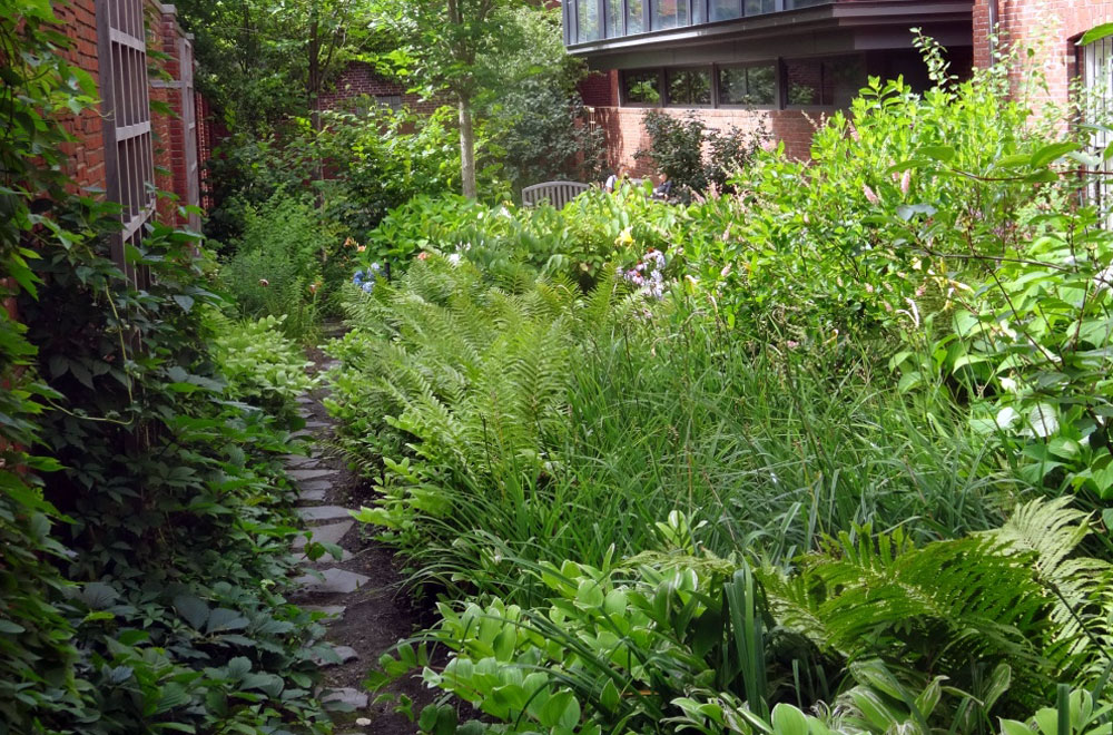 Longfellow Garden - An Urban Oasis