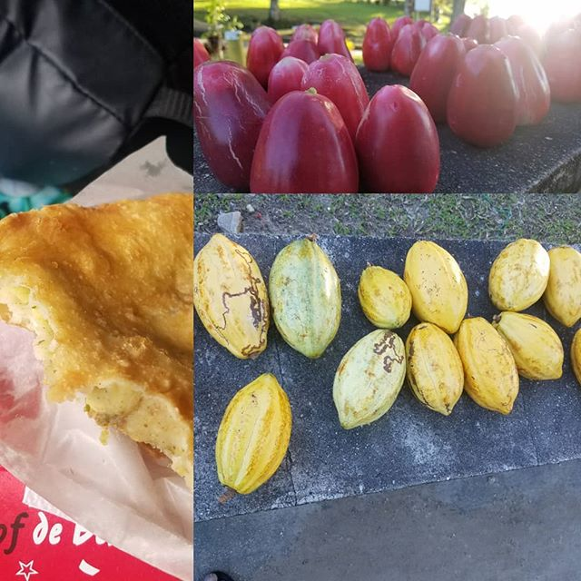 """Some Trini treats by the sea  Aloo Pie- a deep fried bread stuffed with potato or """"aloo"""" in Hindi  Pommerac- a juicy red fruit. Originally from Malaysia. Also called water apple, mountain apple  Cocoa- The fruit that bears the seeds that make chocolate, was a major driver of Trinidad and Tobago economy for over 200 years  #thedeliverermovie #crimedrama #comingsoon #2019 #inspiredbytrueevents  #paulpryce #caribbeancinemas #worldcinema  #sundancelabs #2017finalist #trinidadandtobago #caribbean #independentfilm #fisherman#savemyvillage #drugtrafficking #bigdreams #selfmade #islandlife"""
