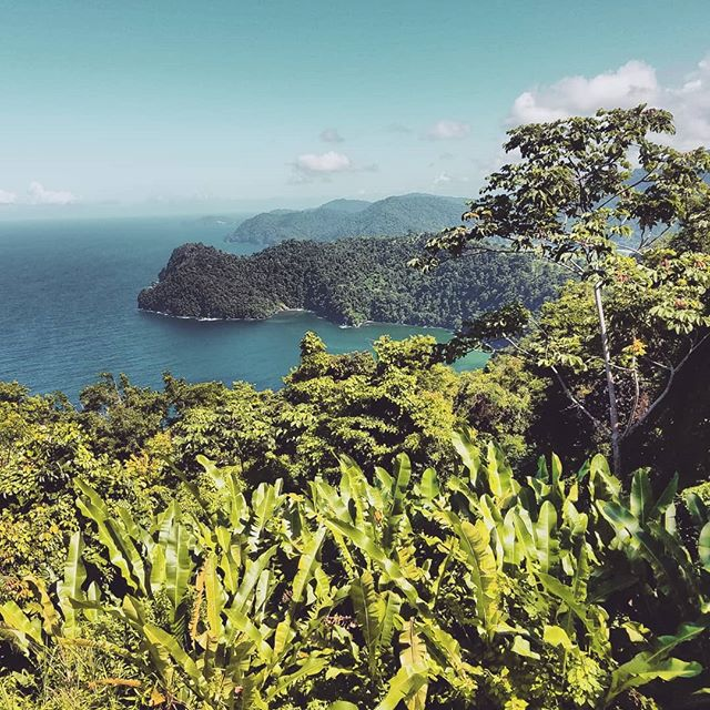 Beauty. Majestic. Nature.  One of the most beautiful views on your way to to Maracas Bay, home to a fishing community and Trinidad's most prized beach... at least most popular.  Did you know that during WWII it was the U.S. Army Corps of Engineers that built the picturesque road that stretches from Maraval a town outside Port of Spain: the capital city to Maracas beach?  Remember to folloe us here on instagram and on Facebook for more cool news and more on The Deliverer Movie.  #thedeliverermovie  #crimedrama  #comingsoon #2019  #inspiredbytrueevents  #paulpryce  #caribbeancinemas  #worldcinema  #sundancelabs #2017finalist #trinidadandtobago #caribbean  #independentfilm  #fisherman #savemyvillage #drugtrafficking
