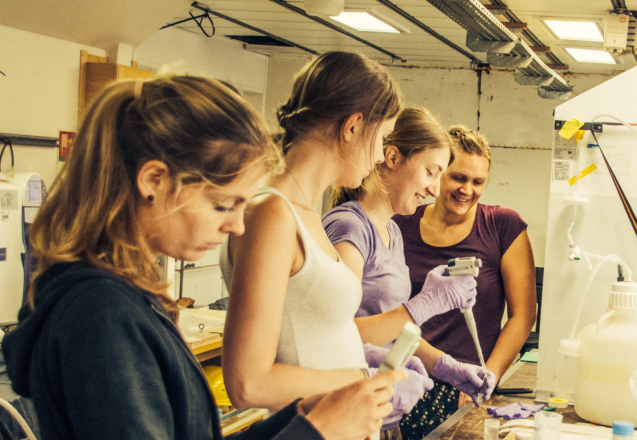 Monica Martens, Laura Schreuder, Franziska Pausch and Laura Korte working on Laura's incubation experiment at the lab.