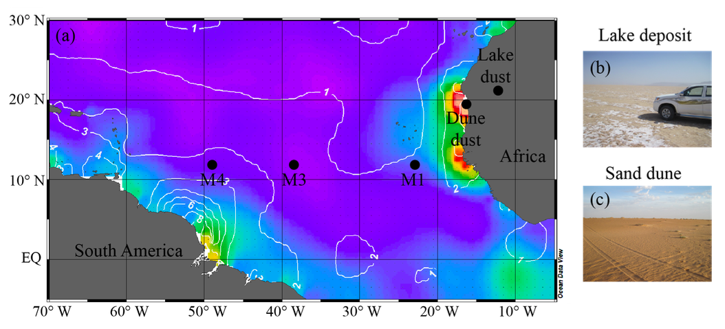 Map showing the sites at which dust incubation experiments were undertaken in the tropical North Atlantic. The color shading displays phosphate concentrations with values increasing from blue = 0 to red = 0.6 µmol L-1, and white lines represent silicate concentrations (µmol L-1) in the surface waters (Ocean Data View, 1955-2010 annual averages). Dust samples used for the experiments were collected in Mauritania, at a (b) a lake deposit, and (c) a sand dune field (Korte et al., 2018).