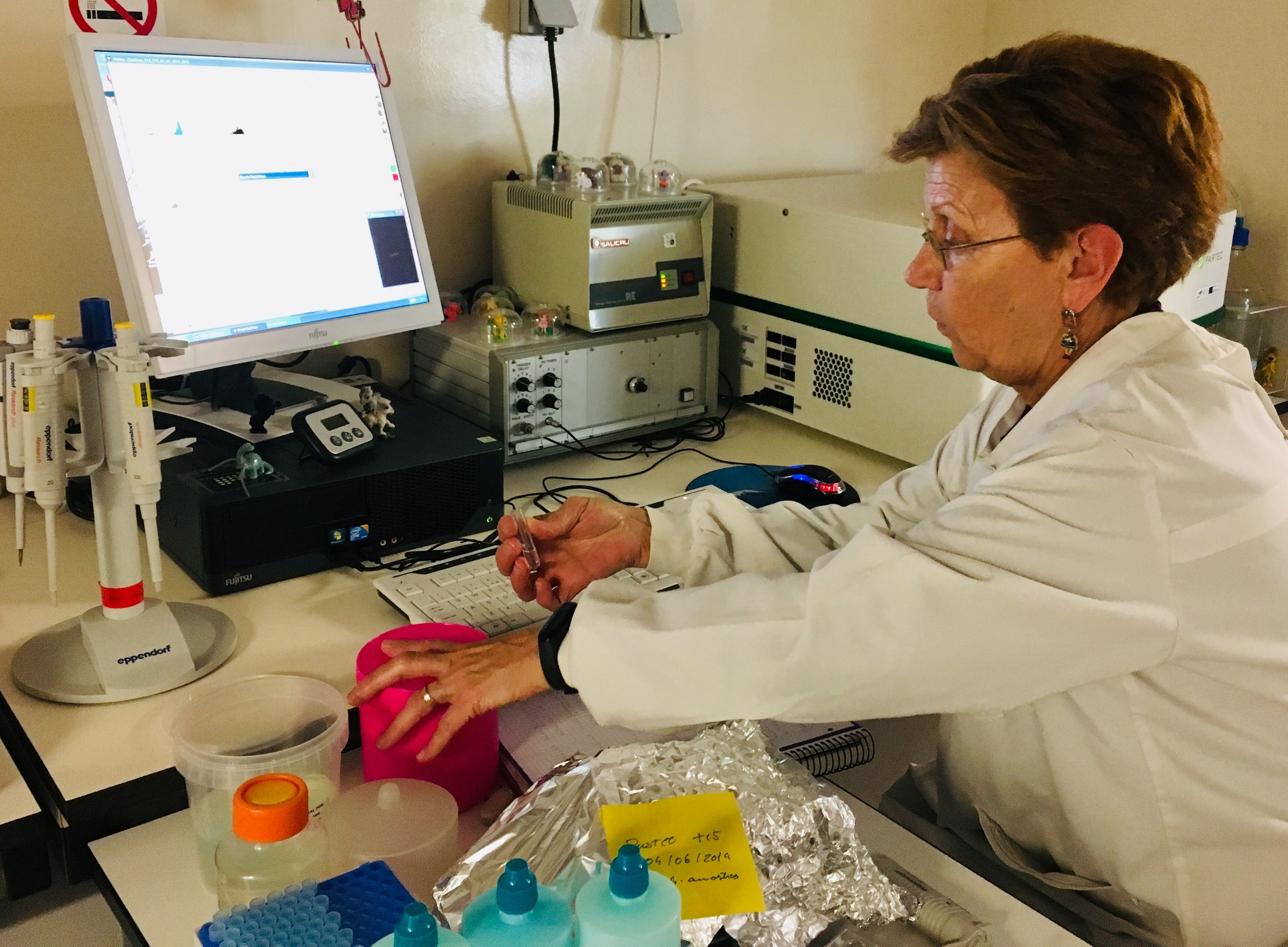 This is Ana Tenreiro, using the flow cytometer for monitoring the cells' growth evolution of  E. huxleyi  during the experiment.